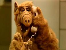 ALF calling