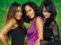 Girlfriends: Cancelled, Proper Series Finale Too Expensive