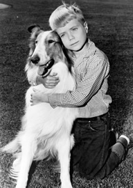 Lassie with young Jon Provost