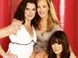 <em>Lipstick Jungle:</em> TV Show Petition to Save the NBC Series