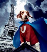 the new Underdog
