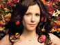 <em>Weeds:</em> Season Seven May Be the Last for the Showtime Series