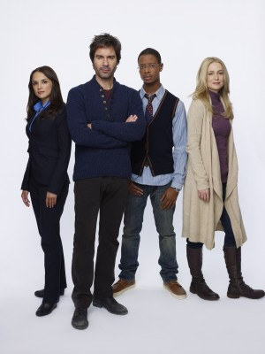 TNT TV series Perception