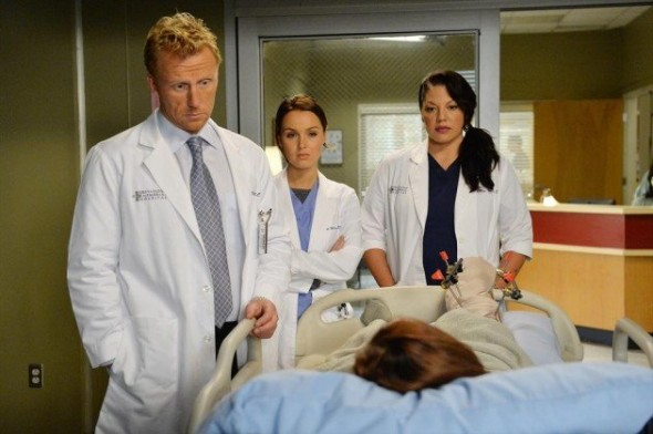 Grey's Anatomy TV show on ABC ratings