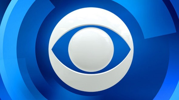 Drew: Person of Interest Actress Cast to Star in CBS Pilot