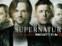 Supernatural TV show on CW: ratings (cancel or renew?)