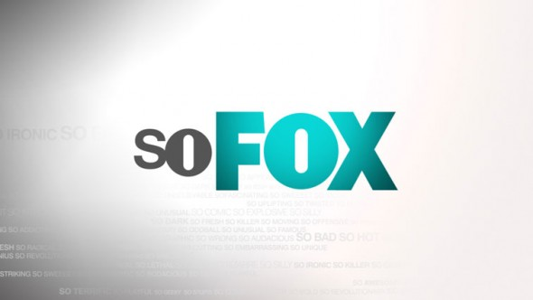 The Work TV Show on FOX: in development