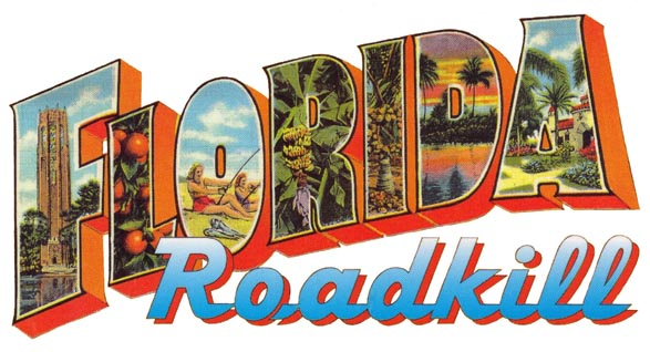 Florida Roadkill