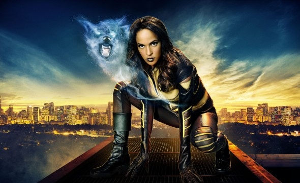 Vixen TV show on CW Seed; Vixen to visit Arrow TV show on CW