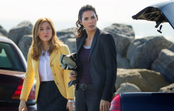 Rizzoli & Isles TV show canceled, no season 8 on TNT