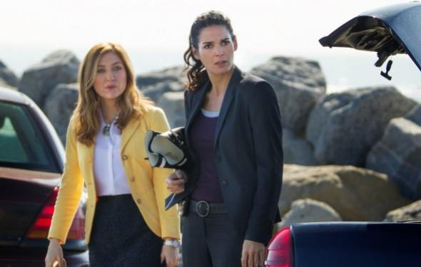 Rizzoli & Isles TV show canceled, no season 8 on TNT