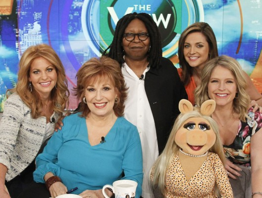 The View TV show on ABC: season 20 renewal
