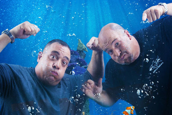 Tanked TV show on Animal Planet: season 6 (canceled or renewed?) 100th episode
