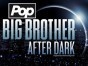 Big Brother After Dark TV show