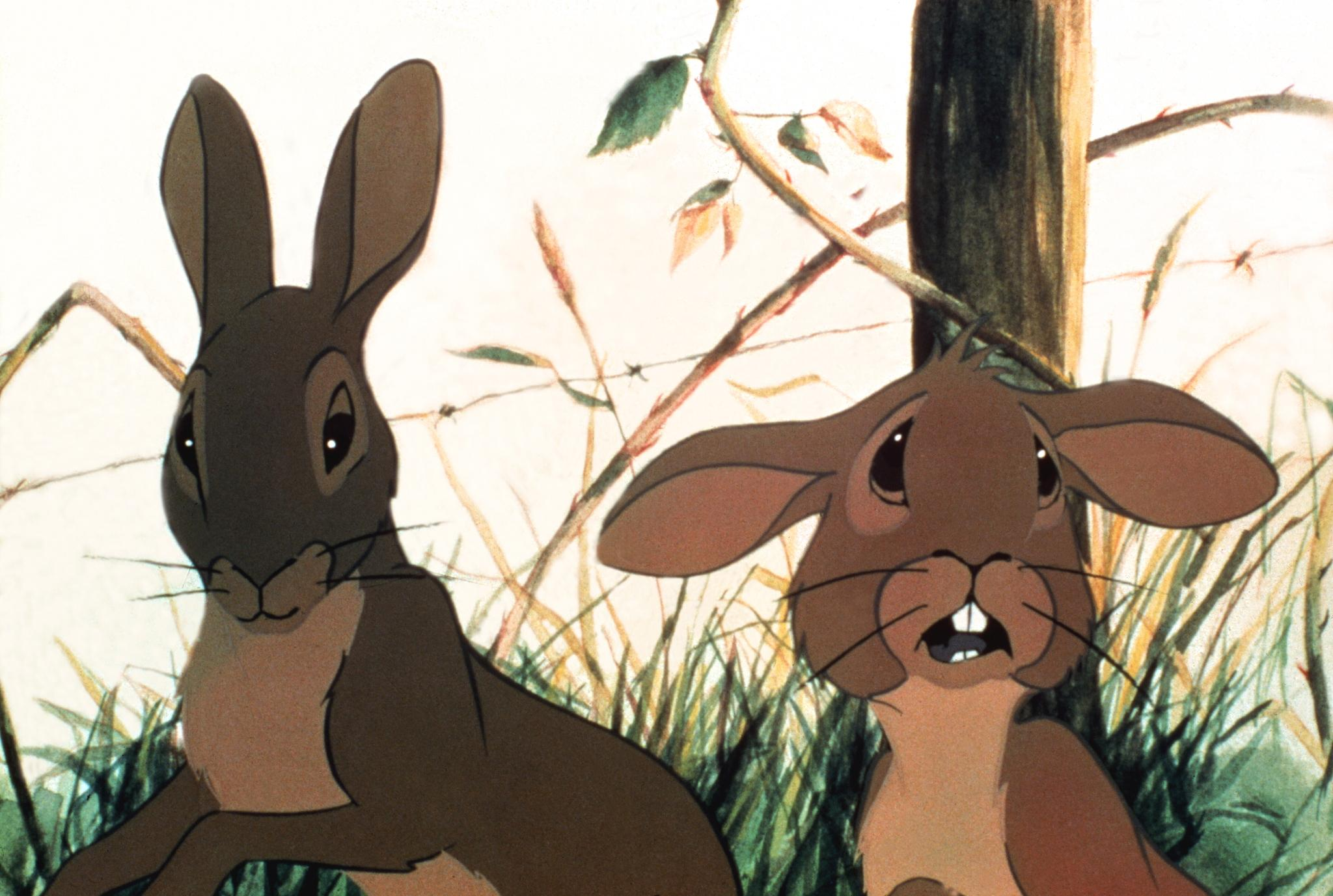 an analysis of mens decisions being not easy ones in hazel of watership down The reason the structure is as it is in watership down is because obviously it isn't about rabbits at all really i think it's about resistance and survival in a warlike situation - a classic epic - and the character of hazel is based on adams' commanding officer when he served in ww2.