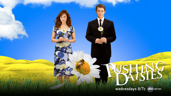 Pushing Daisies TV show on ABC: season 2; canceled, no season 3