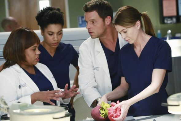 Grey\'s Anatomy: More Cast Deals Locked in for Season 13 - canceled ...