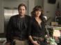 Roadies TV show on Showtime- season 2 (canceled or renewed?).