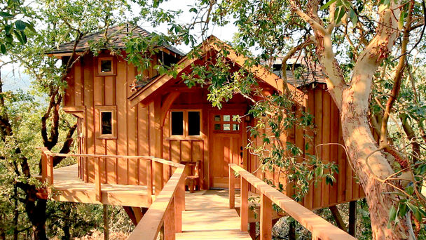 treehouse masters treehouses. Treehouse Masters TV Show On Animal Planet: (canceled Or Renewed?) Treehouses