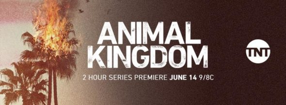 Animal Kingdom TV show on TNT: ratings (cancel or renew?)