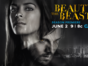 Beauty and the Beast TV show on The CW: ratings (canceled, no season 5)