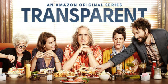 Image result for transparent tv series