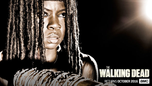 The Walking Dead TV show on AMC