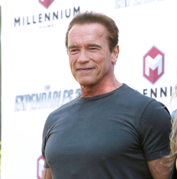 Arnold Schwarzenegger producing Pump TV show in development.