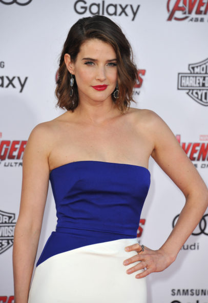 Cobie Smulders; Friends From College TV show on Netflix: season 1 (canceled or renewed?)