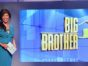 Big Brother TV show on CBS: season 20