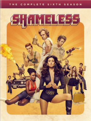 Shameless TV show on Showtime: season six DVD set