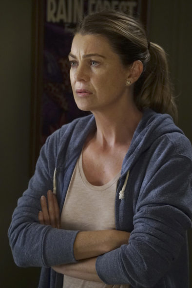 Grey's Anatomy TV show on ABC: season 13 premiere (canceled or renewed?).