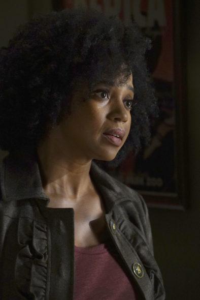 Grey's Anatomy TV show on ABC: season 13 premiere (canceled or renewed?).