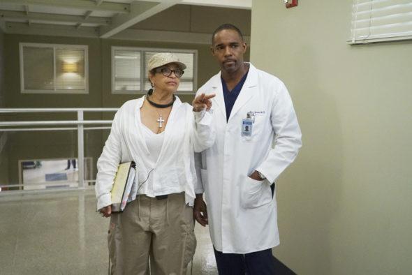 Grey's Anatomy TV show on ABC: season 13 behind-the-scenes (canceled or renewed?).