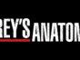 Grey's Anatomy TV show on ABC: season 14 renewal (canceled or renewed?)