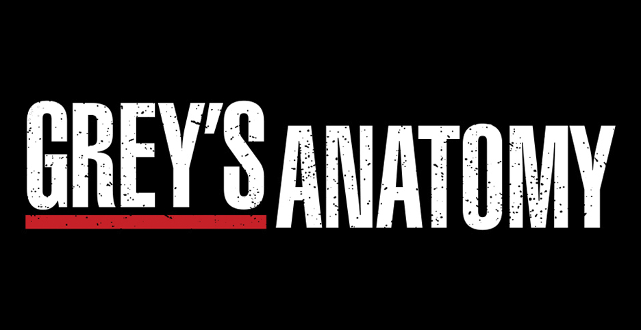 Grey\'s Anatomy TV show on ABC: season 14 renewal