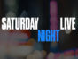 Mikey Day, Alex Moffat, and Melissa Villaseñor are joining the cast as series regulars for the 42nd season of Saturday Night Live. Saturday Night Live TV show on NBC: season 42 (canceled or renewed?)