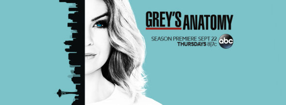 Grey's Anatomy TV show on ABC: ratings (cancel or renew for season 14?)