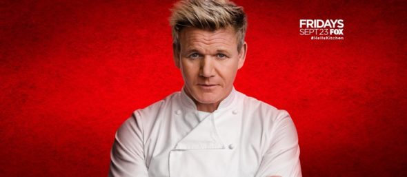 Hell's Kitchen TV show on FOX: ratings (cancel or renew?)