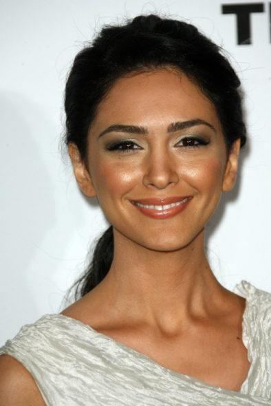 Nazanin Boniadi, Michael Nyqvist, Nicholas Pinnock, and Sara Serraiocco cast as series regulars. Counterpart TV show on Starz: season 1 (canceled or renewed?)