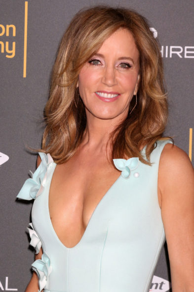 Soap Opera Politics >> ABC Developing Political Family Comedy for Felicity Huffman - canceled TV shows - TV Series Finale