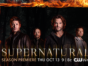 Supernatural TV show on CW: ratings (cancel or season 13?)
