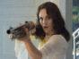 Good Behavior TV show on TNT: season 1 (canceled or renewed?)