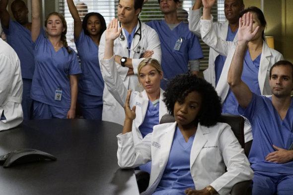 Grey's Anatomy TV show on ABC: season 13 (canceled or renewed?)