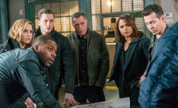 Chicago PD TV show on NBC (canceled or season five?)