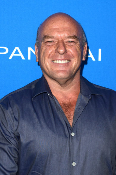 Dean Norris: Claws TV show on TNT: season 1 (canceled or renewed?)