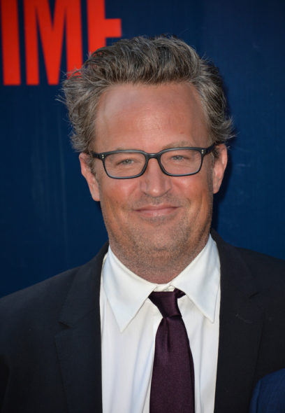 Matthew Perry: The Good Fight TV show on CBS: season 1 (canceled or renewed?)