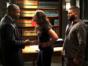 Scandal: Gladiator Wanted TV show on ABC: canceled or renewed?