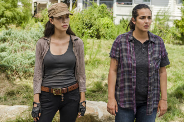 The Walking Dead TV show on AMC: canceled or renewed?