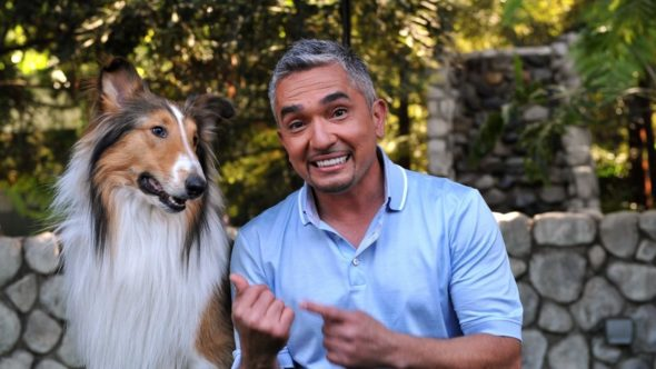 Cesar Millan's Dog Nation TV show on Nat Geo WILD: (canceled or renewed?)